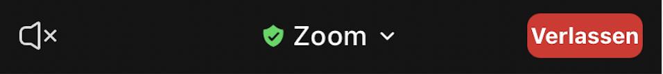 zoom-smbole-4